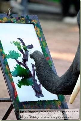 Elephants creativity paintings (3)
