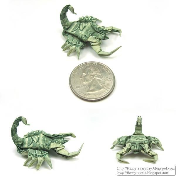 New_pics__Dollar_Scorpion_by_orudorumagi11_thumb