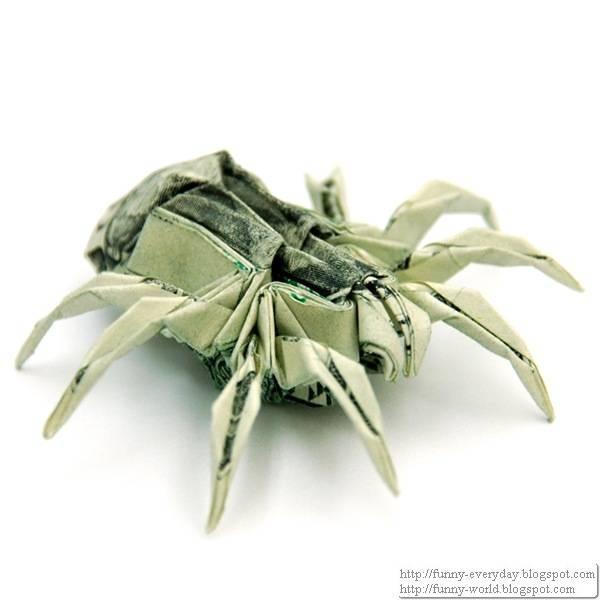 Two_Dollar_Spider_by_orudorumagi11_thumb