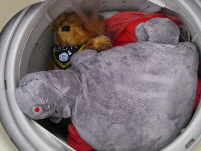 In the washing machine.