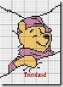 pooh13
