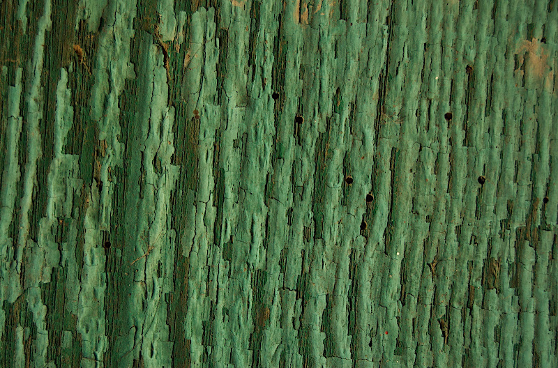 Old Fence #4