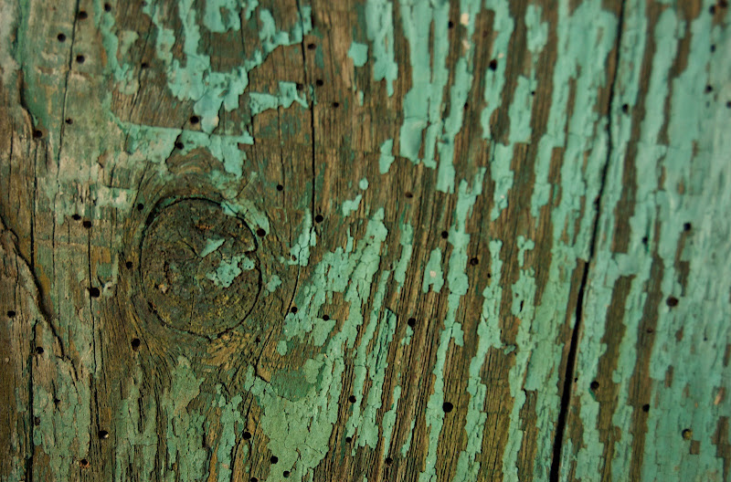 Old Fence #6
