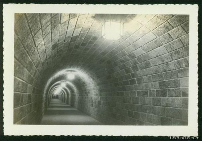 crbst_5-16-4-12a-19501