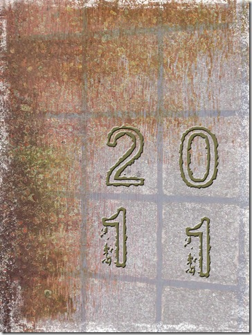 2011-cover