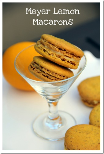 Meyer Lemon Macarons3-1