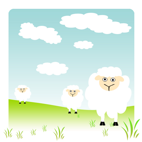 ovejas en un pasto, sheeps in a pasture