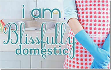 i-am-blissfully-domestic-apron