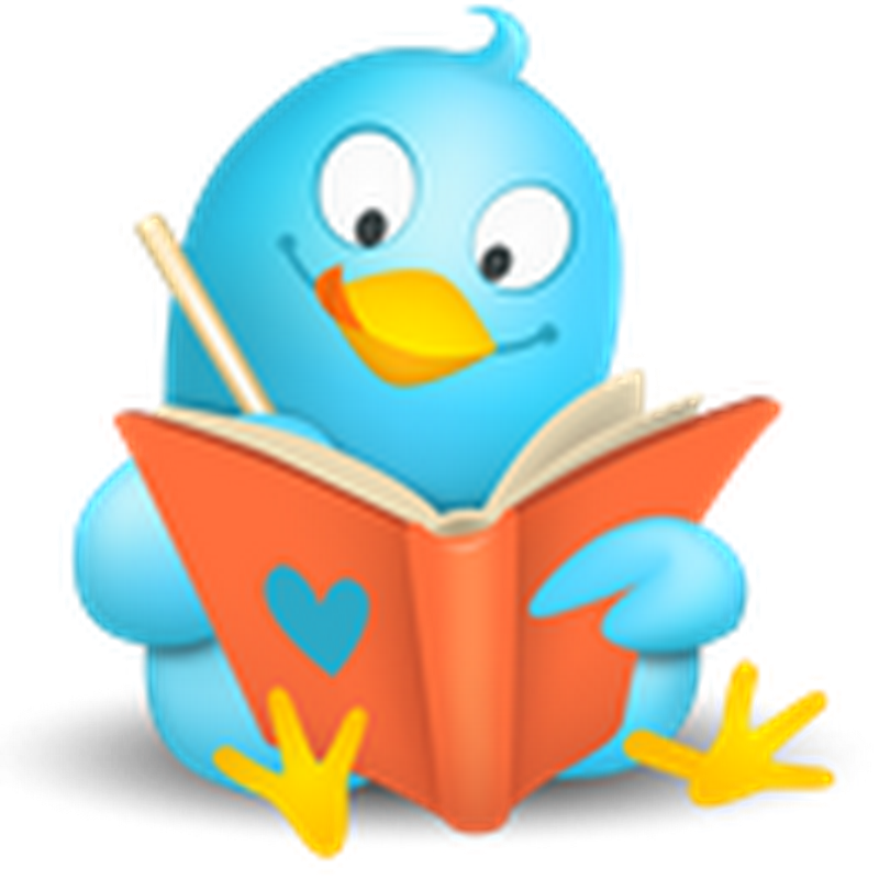 Cinco regrinhas básicas para novatos no Twitter