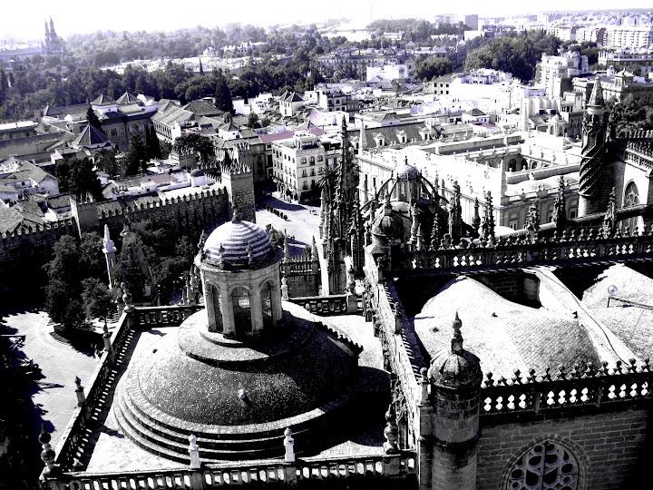 Widok z katedry