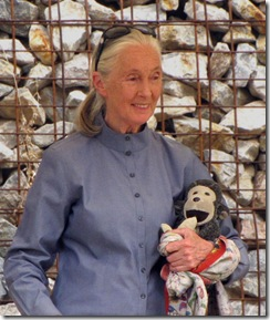 jane goodall urges parents and educators to look into her roots and shoots