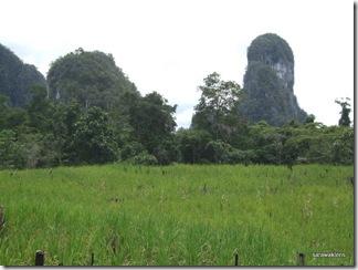 limestone_hills_of_Tebakang