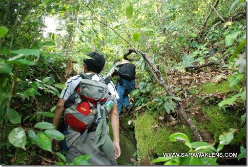 hiking_in_Santubong_01