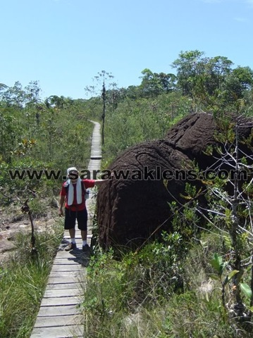 Bako_National_Park_adventure_08
