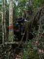 Teluk_Limau_trail_Bako_National_Park_08