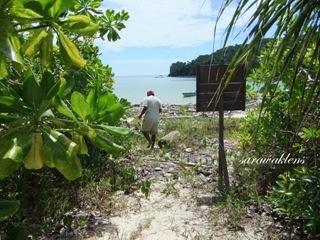 Teluk_Limau_trail_Bako_National_Park_69