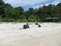 Teluk_Limau_beach_Bako_National_Park_77