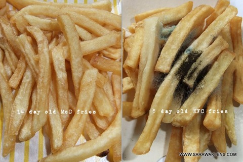 McDonalds and KFC fries