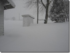 2010_snow_005