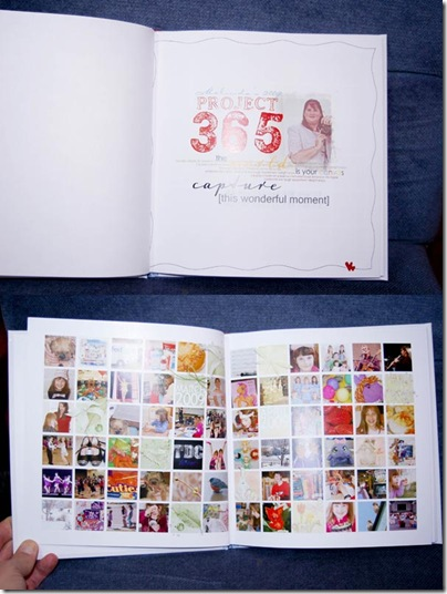2010_0115_P365-2009book-3