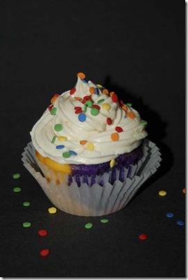 2009_0813_RainbowCupcakes-49