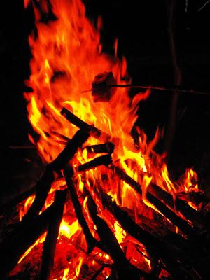 Muntii Cernei. Imagini la foc
