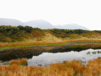Fagaras - Sfarsit de Septembrie. De la Barcaciu prin Varful Scara spre malul Lacului Avrig