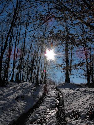 Tehomir. Iarna. Silent Sun
