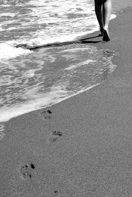 Marea. Urma pasilor pierduti...