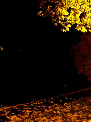 Oradea. Frunze galbene, parc, amintiri...