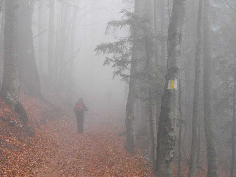 marcaj prin ceata