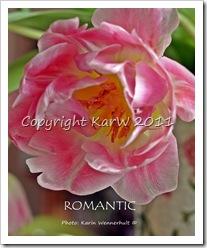 RomanticSgn