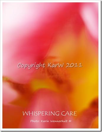 WhisperingCareSgn
