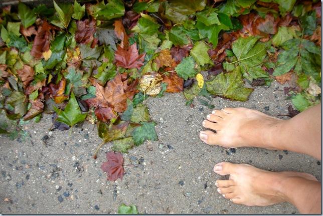 Wet Barefoot Run 9756