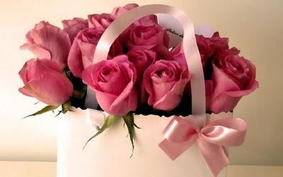 http://lh4.ggpht.com/_FNFPne1Qjw8/S-V-MFP2-XI/AAAAAAAAAcA/T1mXjONXmPs/s400/rose.jpg