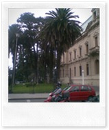 Rejas Casa de Gobierno - 15_03_11 (2)