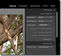 Lightroom 2 | Quick development options