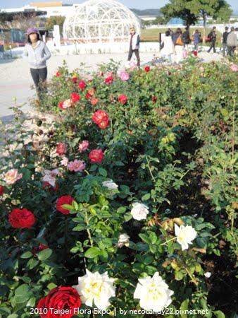 2010 Taipei Flora Expo - Oman