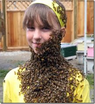 honey bee beard