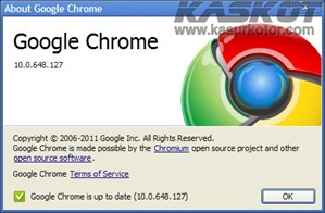 Download Update Google Chrome 10.0.648.127 Stable