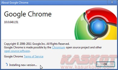 Google Chrome Update 10.0.648.204 Stable Version