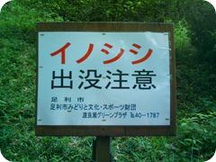 ashikaga hike 018