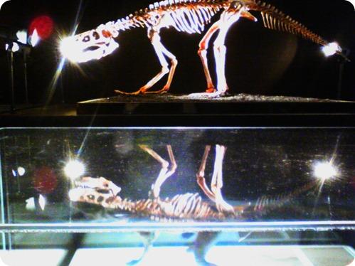 dinosaurs 021