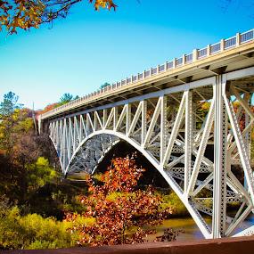 M-55 Pine River /Mortimer E. Cooley Bridge by Christine Weaver-Cimala - Buildings & Architecture Bridges & Suspended Structures ( michigan, structure, arch, metal, historical, cooley, architecture, bridge, historic, river )