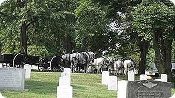graves-horses