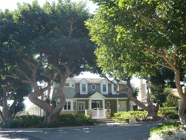 California Fall 2010 165