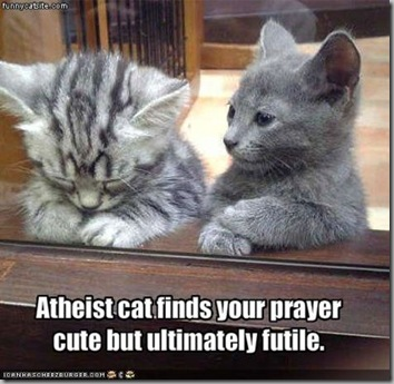 Atheist cat