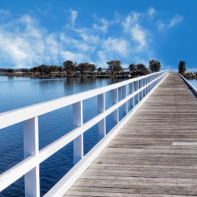 Australind by Loredana  Smith - Landscapes Waterscapes ( water, clouds, peaceful, freedom, scenic, beauty, downunder, landscape, inspiring, free, vacation, midday, sky, inspiration, nature, relaxed, peace, australia, outdoor, trees, scene, view, inlet, natural )