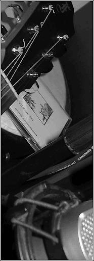 melnar, tilromen, disc, guitar