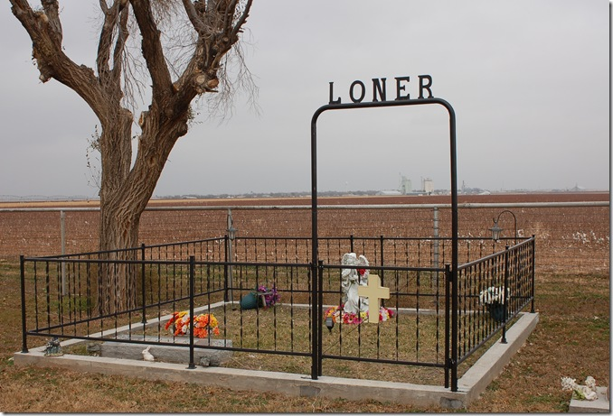 Loner fence 2